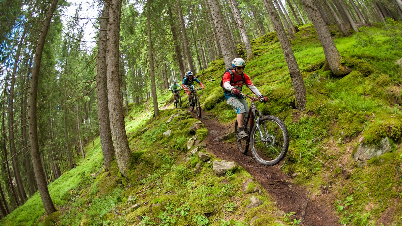 Mountainbike-Touren im Rosengarten